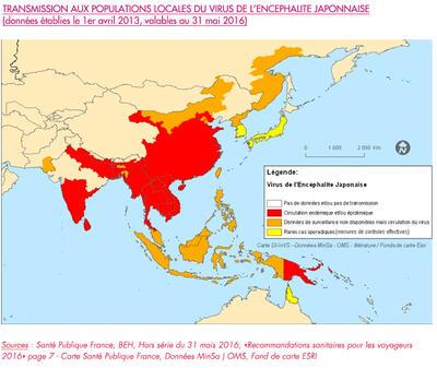 Carte Transmission aux populations locales du virus de l'encéphalite japonaise