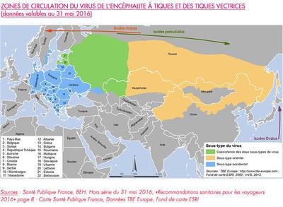 Carte zone de circulation du Virus de l'encéphalite à tiques et des tiques vectrices